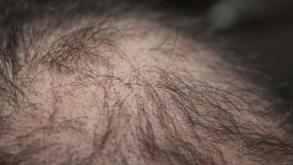 Die Maske für das Haar mit der Gelatine in mikrowolnowke